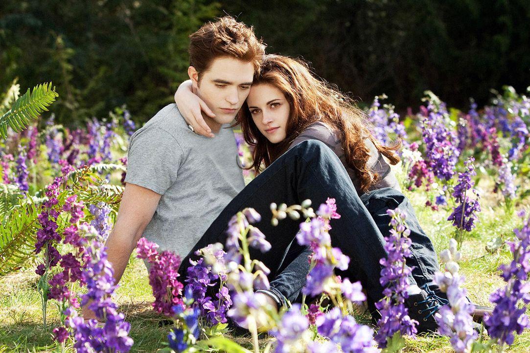 Twilight Saga Breaking Dawn Biss Zum Ende Der Nacht Teil 2
