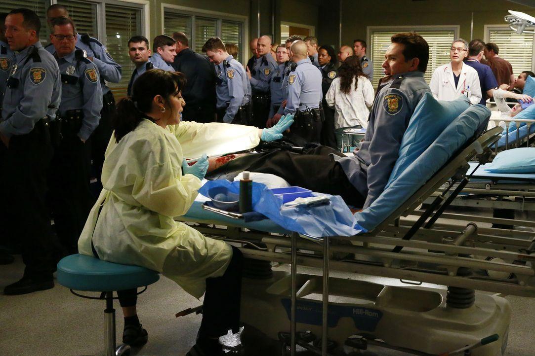 In der Notaufnahme geht es drunter und drüber, als nach einem Raubüberfall mehrere Polizisten eingeliefert werden. Callie (Sara Ramirez, vorne l.) v... - Bildquelle: ABC Studios
