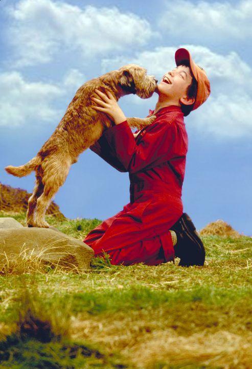 Ein Küsschen in Ehren, kann niemand verwehren: Owen (Liam Aiken) und Hubble ... - Bildquelle: Metro-Goldwyn-Mayer Studios Inc. All Rights Reserved.