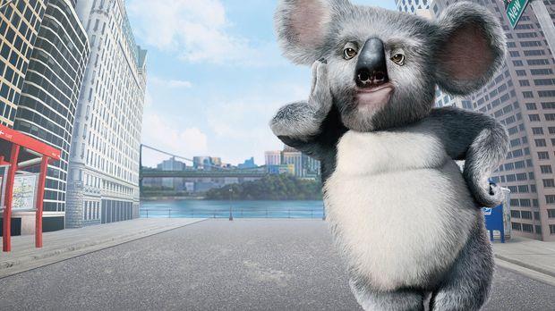 Geht mit seinen Freunden aus dem New Yorker Zoo auf große Reise: Koala Nigel...