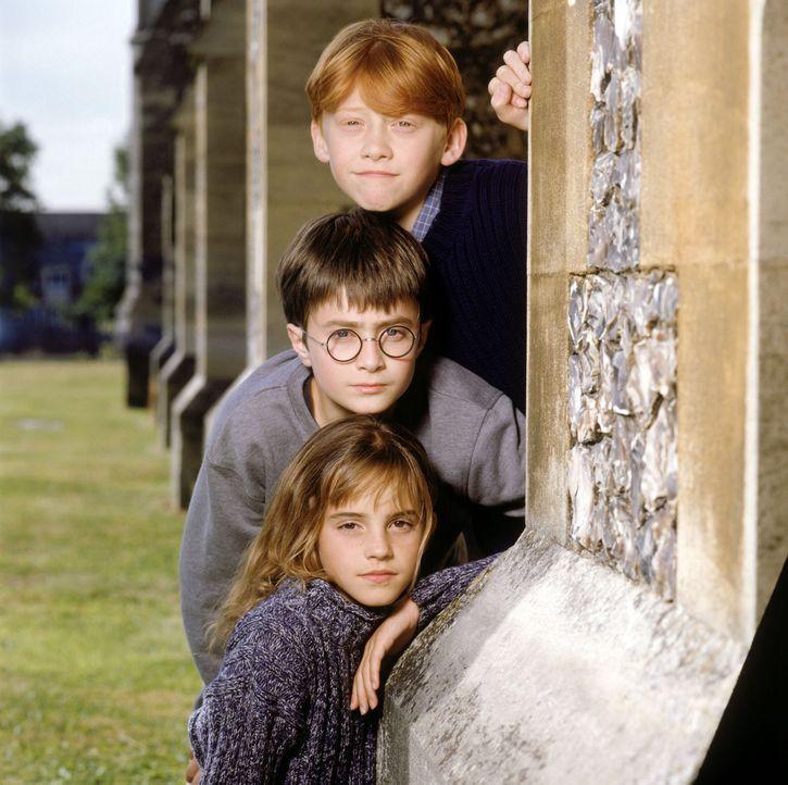 Werden schon im ersten Jahr auf der Zauberschule Hogwarts zu ganz dicken Freunden: Ron (Rupert Grint, oben), Harry Potter (Daniel Radcliff, M.) und... - Bildquelle: Warner Bros. Pictures