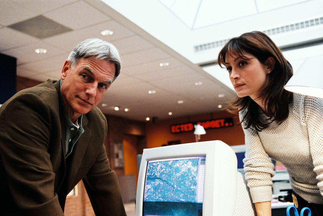 Bei den Ermittlungen stellen Gibbs (Mark Harmon, l.) und Kate (Sasha Alexander, r.) fest, dass es sich bei dem Toten um einen jungen Seemann handelt... - Bildquelle: CBS Television