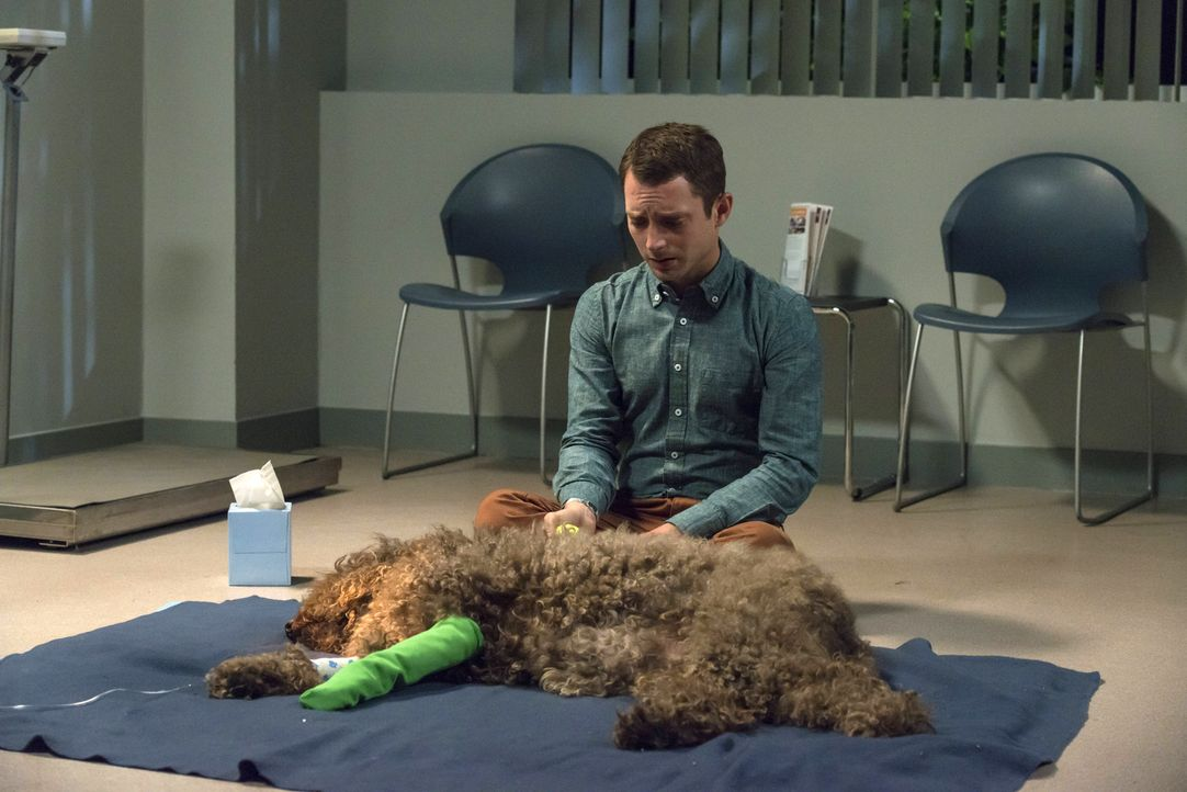 Nach einem Anfall bringt Ryan (Elijah Wood) seinen Freund Wilfred ins Krankenhaus ... - Bildquelle: 2014 Fox and its related entities.  All rights reserved.
