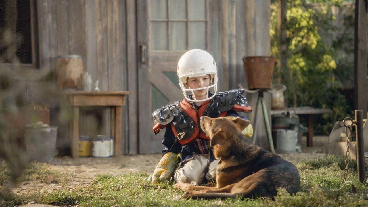 Als der neue Hund der Sparks beginnt Sheldon (Iain Armitage) hinterherzulaufen und eines nachts sogar vor seinem Bett steht, entbrennt ein Streit zw... - Bildquelle: Warner Bros. Television