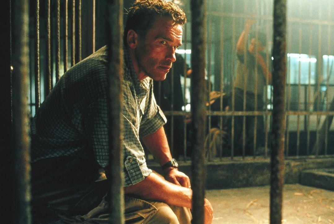 Schon bald muss Gordon (Arnold Schwarzenegger) erfahren, dass in Kolumbien andere Gesetze gelten. Dennoch gibt er nicht auf ... - Bildquelle: Warner Bros.