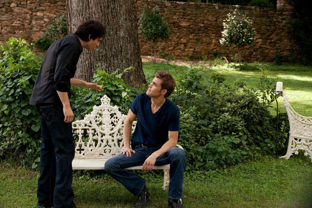 Wie soll es nun weitergehen? Stefan (Paul Wesley, r.) und sein Bruder Damon (Ian Somerhalder, l.) sind sich der Gefahr, die von ihrer wieder aufgeta... - Bildquelle: Warner Brothers