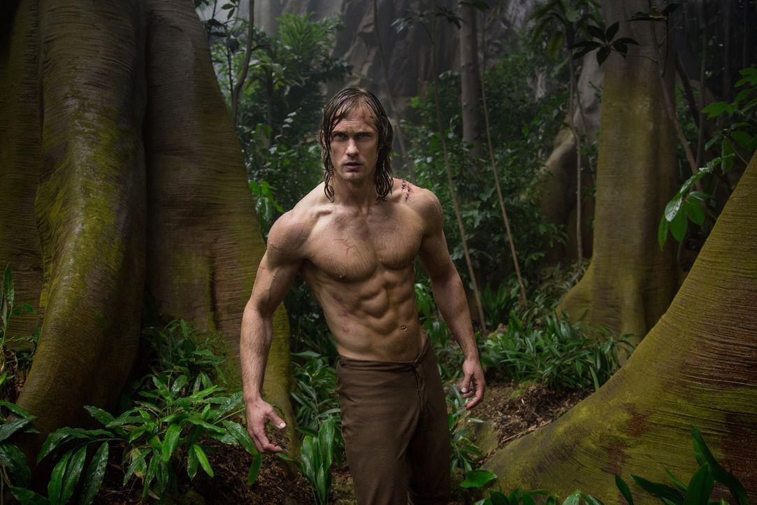 Tarzan (Alexander Skarsgård) - Bildquelle: Warner Bros.