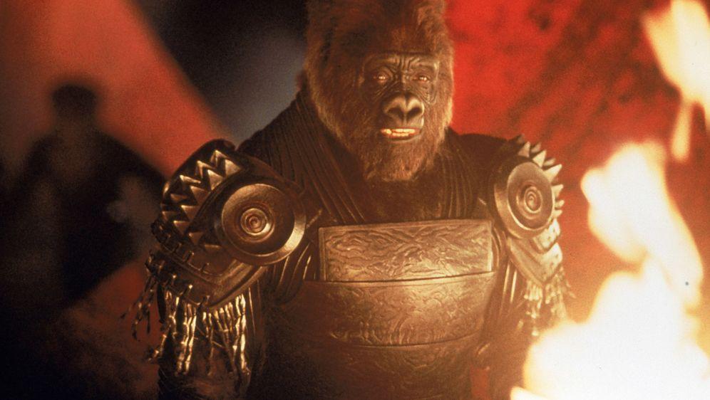 Planet der Affen - Bildquelle: 2003 Twentieth Century Fox Film Corporation. All rights reserved.