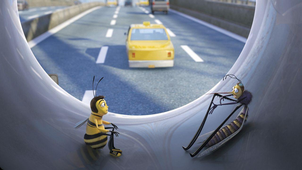 Biene Barry (l.) sucht Rat bei Freunden. Denn er fühlt sich ganz anders als die anderen in seinem Volke ... - Bildquelle: BEE MOVIE TM &   2007 DREAMWORKS ANIMATION LLC. All Rights Reserved.