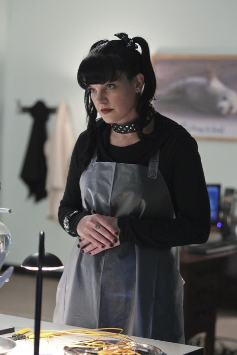 Bei den Ermittlungen in einem neuen Fall gerät Abby (Pauley Perrette) selbst in Gefahr ... - Bildquelle: Sonja Flemming CBS Television