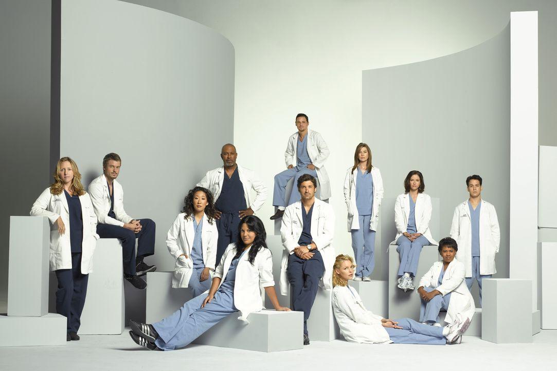 (5. Staffel) - Machen sich jeden Tag auf Neue daran, den unberechenbaren Krankenhausalltag zu meistern: (v.l.n.r.) Dr. Hahn (Brooke Smith), Dr. Sloa... - Bildquelle: Touchstone Television