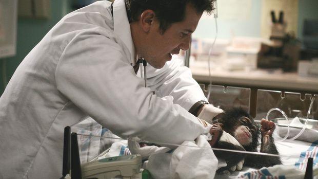 Ist besorgt um seinen kleinen Patienten: Dr. Clemente (John Leguizamo) ... ©...