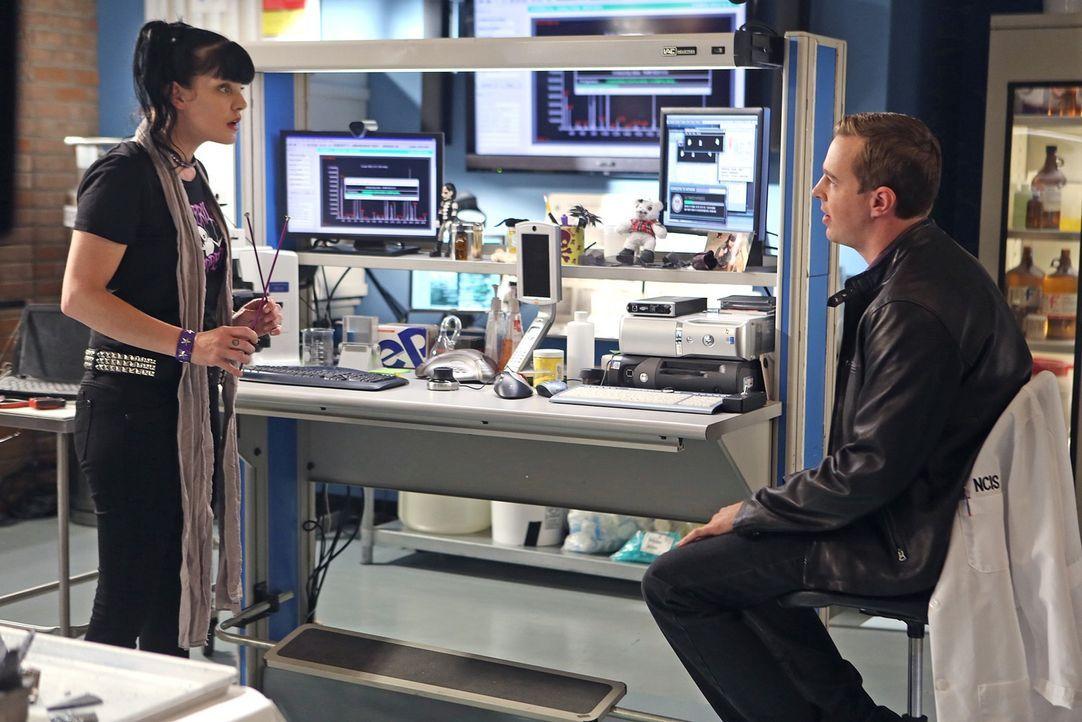 Ein gemeinsamer Konzertbesuch mit Abby (Pauley Perrette, l.) hat Folgen für McGee (Sean Murray, r.) ... - Bildquelle: CBS Television