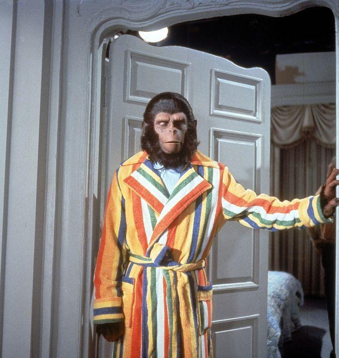 Auf der Erde angekommen, avancieren die sprechenden Affen (Roddy McDowall) bald zur großen Attraktion und zu einem Fall für den amerikanischen Kon...
