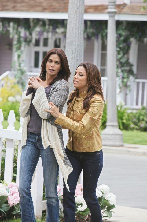 Während Lynettes Leben und das ihres ungeborenen Babys in Eddies Händen liegen, versucht Gabrielle (Eva Longoria, r.) mit Susans (Teri Hatcher, l.)... - Bildquelle: ABC Studios