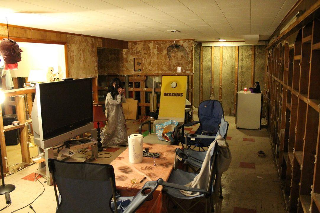 Als Bo Trant mit seinem Hausschwein Hammy in sein erstes Eigenheim zieht, wünscht er sich nichts mehr, als ein richtiges Man Cave. Können Tony Sirag... - Bildquelle: 2013,DIY Network/Scripps Networks, LLC. All Rights Reserved.