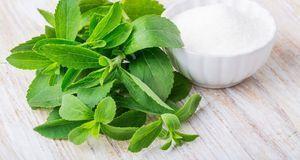 Kalorienarmen Eistee selber machen? Na klar, einfach Stevia statt Zucker verw...