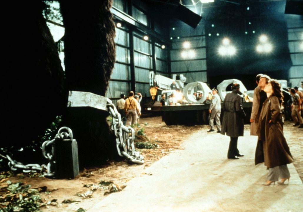 In einem überdimensionalen Gefängnis wird die Gorilladame Lady Kong gefangen gehalten. - Bildquelle: Paramount Pictures