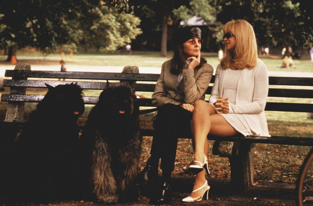 Wenn die beiden Hunde hören könnten, welche Probleme Ellie (Diane Keaton) und Mona (Goldie Hawn) mit der Liebe haben, würden sie die keinen Zweib... - Bildquelle: KINOWELT