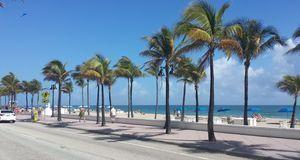 Miami in Florida ist Namensgeber der South Beach-Diät und Wohnort ihres Erfin...
