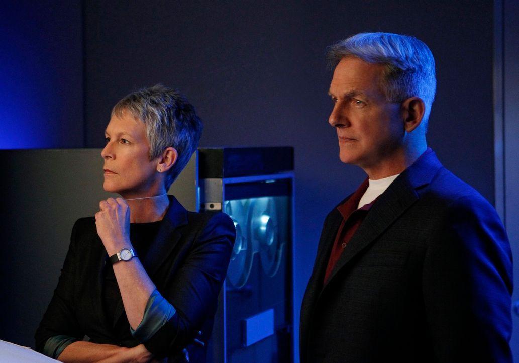 Müssen in einem neuen Fall zusammen arbeiten: Gibbs (Mark Harmon, r.) und Dr. Samantha Ryan (Jamie Lee Curtis, l.) ... - Bildquelle: 2012 CBS Broadcasting Inc. All Rights Reserved.