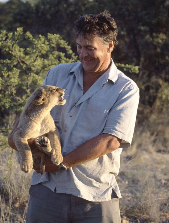 Für seine spektakulären Tierdokumentationen entwickelte der Tierfilmer, Regisseur und Produzent John Downer einen speziellen ferngesteuerten Kamer... - Bildquelle: Philip Dalton/BBC/John Downer