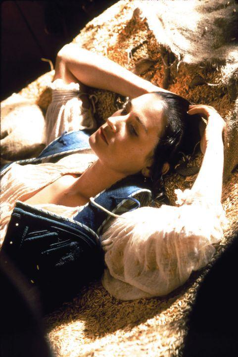 Als die schöne Hester Prynne (Demi Moore, M.) 1666 ohne ihren Ehemann Roger in der neuenglischen Siedlung New Jerusalem ankommt, erregt sie sofort d... - Bildquelle: Takashi Seida Cinergi Pictures Entertainment Inc. and Cinergi Productions N.V.  All Rights Reserved.