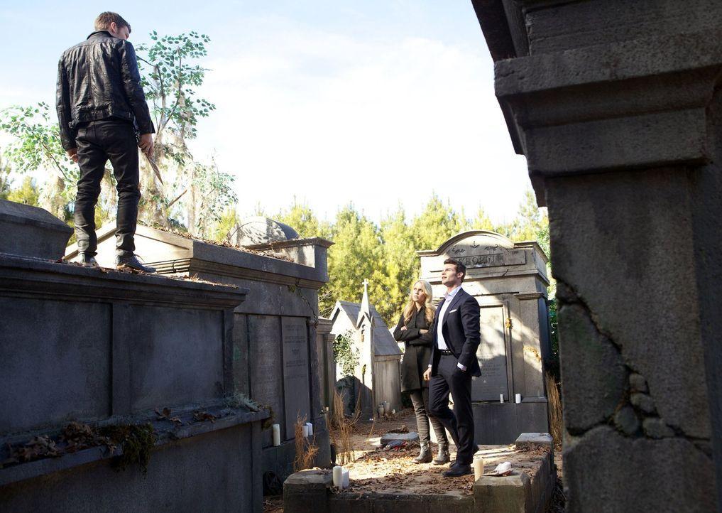 Klaus (Joseph Morgan, l.), Elijah (Daniel Gillies, r.) und Rebekah (Claire Holt, M.) sind zusammen mit ihrer Wut, dem Hass und den Enttäuschungen ei... - Bildquelle: Warner Bros. Television