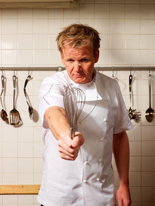 Gordon Ramsay fordert Disziplin in der Küche. - Bildquelle: Fox Broadcasting. All rights reserved.