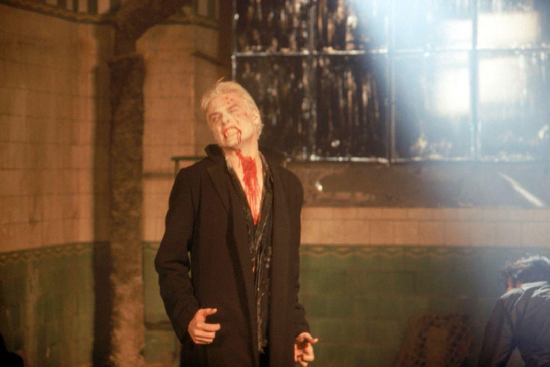"""Dass er Sonnenlicht meiden sollte, dürfte dem berühmten Vampir (Stephen Billington) auch nach seiner kurzen """"Auszeit"""" noch bekannt sein! - Bildquelle: Neo Art & Logic"""