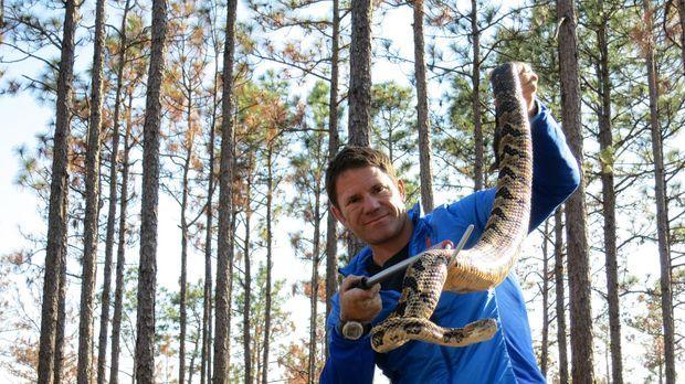 Steve Backshall wagt in den Wäldern North Carolinas einen genauen Blick auf e...
