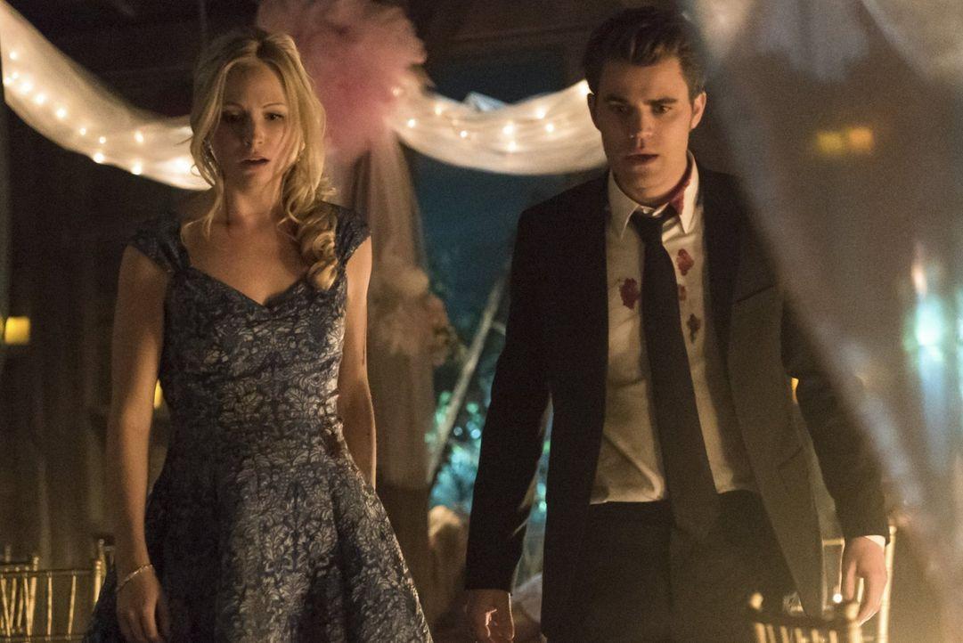 Entscheiden Caroline (Candice Accola, l.) und Stefan (Paul Wesley, r.) endgültig über ihre Beziehung zueinander? - Bildquelle: Warner Bros. Entertainment, Inc