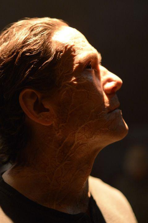 So schnell wird Peter (Neil Napier) nicht aufgeben ... - Bildquelle: 2014 Sony Pictures Television Inc. All Rights Reserved.