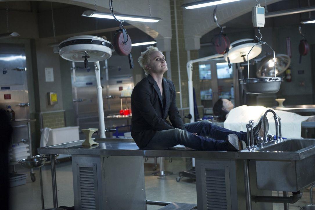 Sorgt mit seinem Überraschungsbesuch nicht nur für Freude: Blaine (David Anders) ... - Bildquelle: Warner Brothers