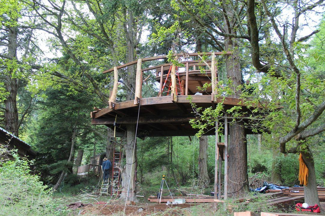 Für ein besonderes Jubiläum von einem der Treehouse Guys, legen sich die anderen mächtig ins Zeug und geben alles, um ein ganz besonderes Baumhaus z... - Bildquelle: 2015, DIY Network/Scripps Networks, LLC. All Rights Reserved.