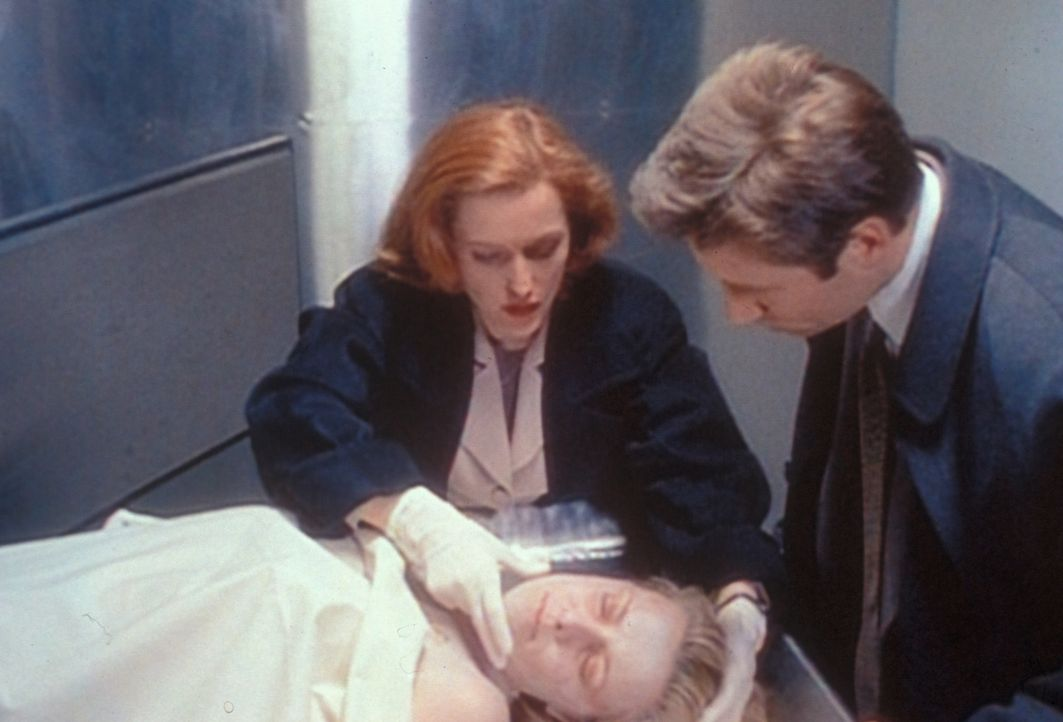 Scully (Gillian Anderson, l.) will Mulder (David Duchovny, r.) eine Phosphoressenz um Mund und Nase einer ermordeten Prostituierten zeigen, die sie... - Bildquelle: TM +   2000 Twentieth Century Fox Film Corporation. All Rights Reserved.