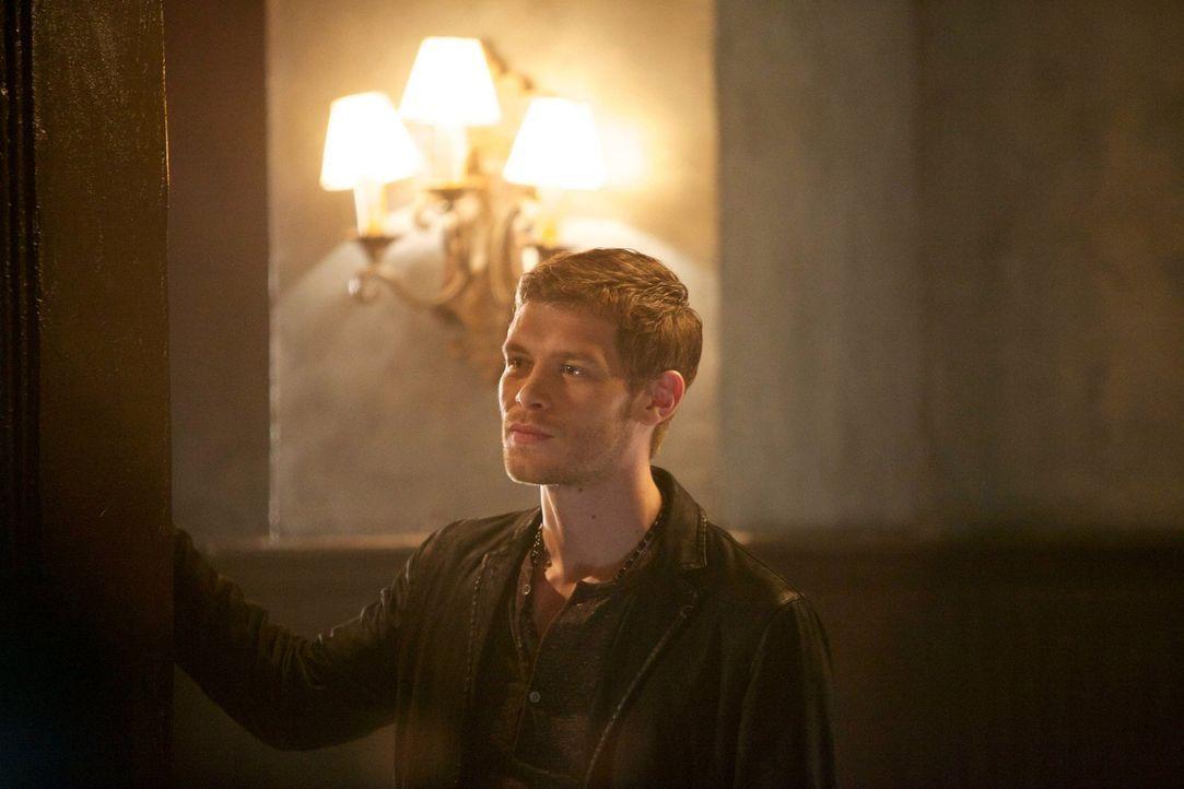 Klaus (Joseph Morgan) wird nicht aufhören zu kämpfen, bis er wieder der König in New Orleans ist ... - Bildquelle: Warner Bros. Television