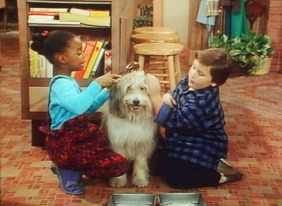 Rudy (Keshia Knight Pulliam, l.) und Peter (Peter Costa, r.) machen den Hund, der ihnen zugelaufen ist, schön, weil Vater Cliff nur einen niedliche... - Bildquelle: 20th Century Fox Television