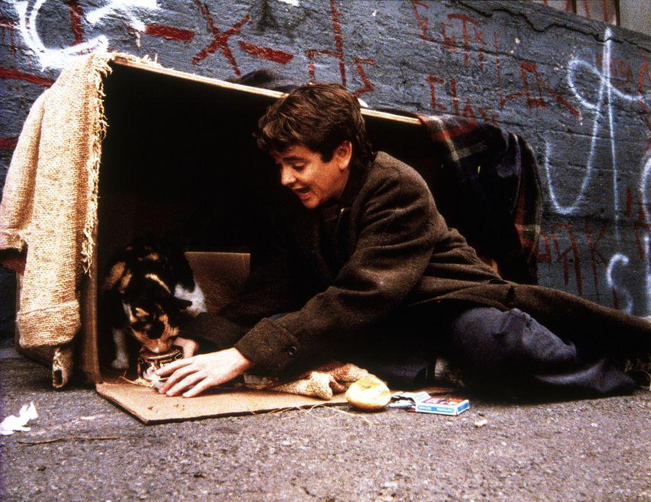 """Arnie (John Franklin), ein zurückgebliebener Junge, der seinem Vater davongelaufen ist, feiert mit Kater Thomas Geburtstag in seinem neuen """"Zuhause"""". - Bildquelle: 20th Century Fox Television"""