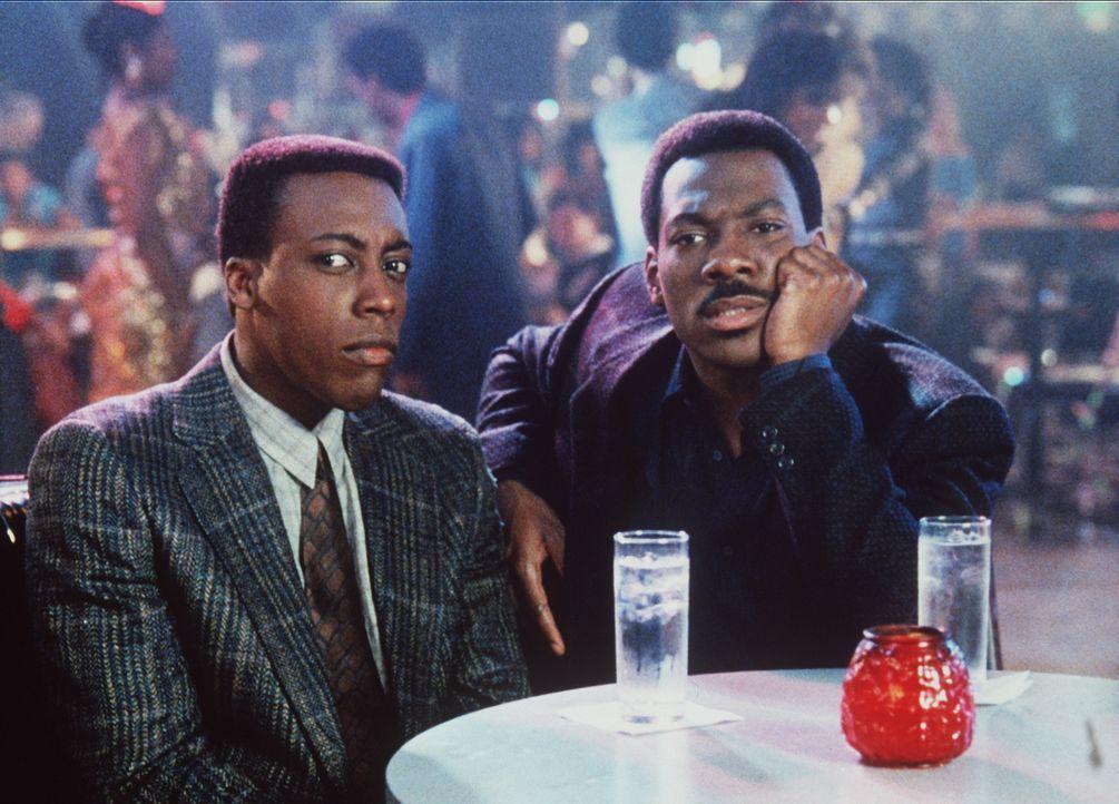 Die Erkenntnis: Es ist auch für den attraktiven Prinz Akeem (Eddie Murphy, r.) und seinen Freund Semmi (Arsenio Hall, l.) nicht einfach, auf die Sc... - Bildquelle: Paramount Pictures