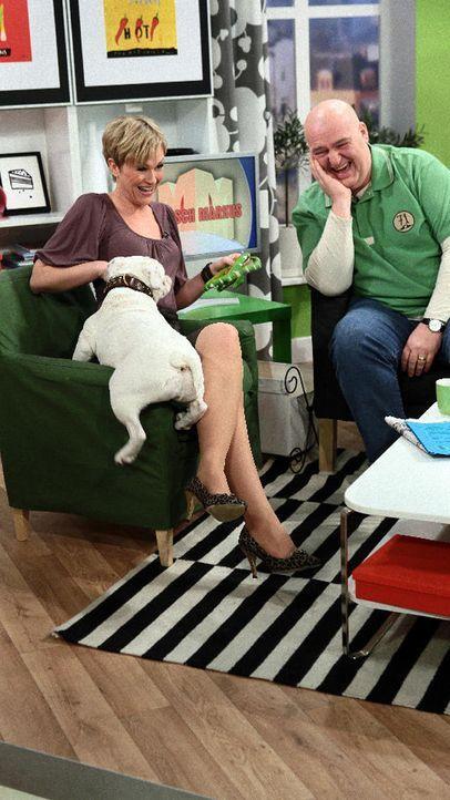 fruehstuecksfernsehen-studiohund-lotte-in-action-im-studio-078 - Bildquelle: Ingo Gauss