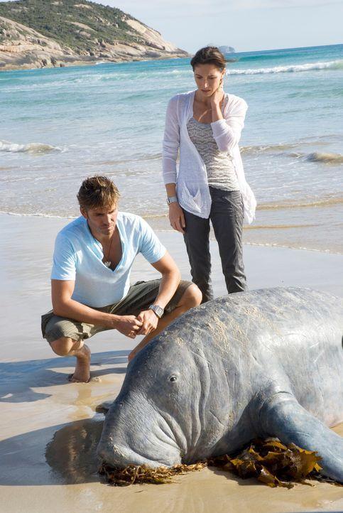 Als Peter (James Caviezel, l.) und Carla (Claudia Karvan, r.) frevelhaft mit der Natur umgehen, beginnt für sie ein erbarmungsloser Kampf ums Überle... - Bildquelle: Arclight Films