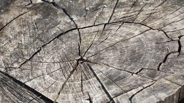 Weihnachtsdeko Aus Holz Sat 1 Ratgeber