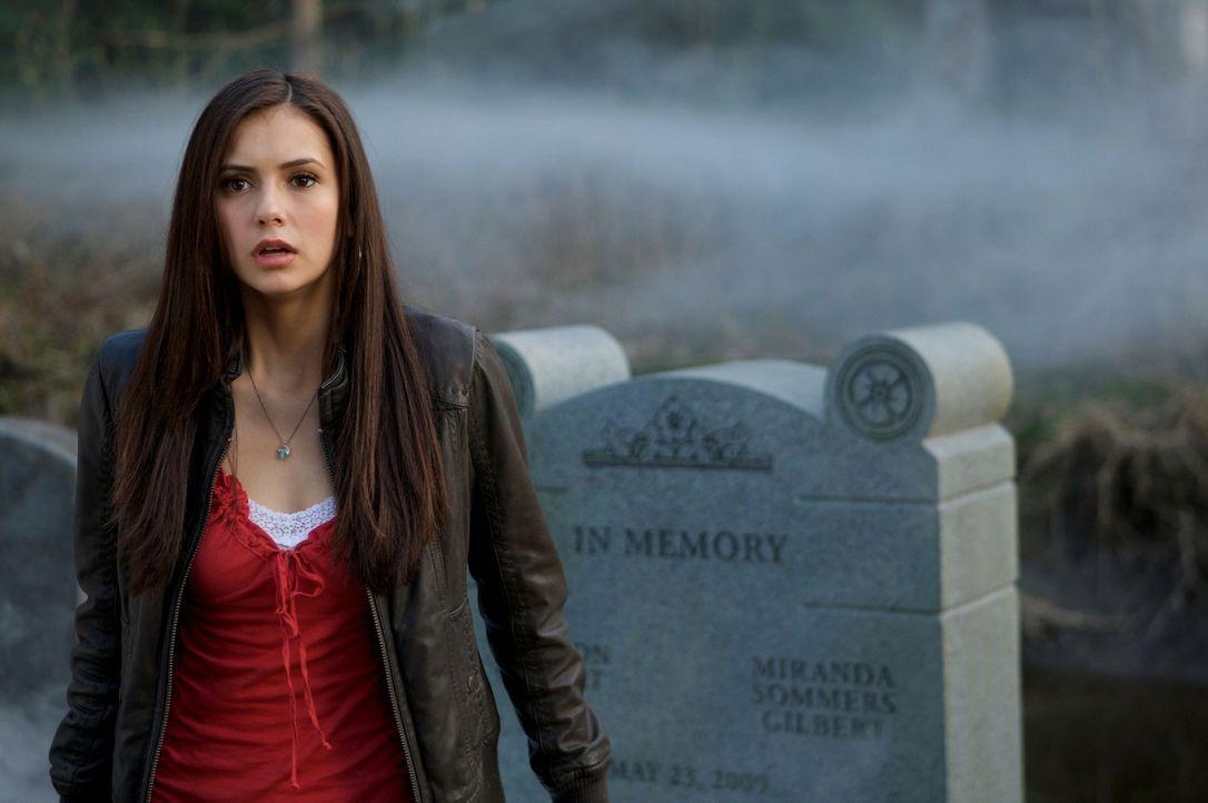 Als Elena (Nina Dobrev) das Grab ihrer Eltern besucht, zieht plötzlich dichter Nebel auf ... - Bildquelle: Warner Brothers