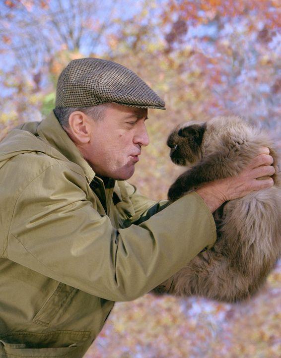 Neben seiner Familie kann sich Jack (Robert De Niro) lediglich noch für seine Katze erwärmen. Diese umsorgt er mit der gleichen liebevollen Akribi... - Bildquelle: 2000 Universal Studios and DreamWorks LLC.  All rights reserved.