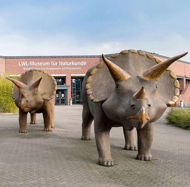 Museum für Naturkunde in Münster - Bildquelle: LWL/Steinweg