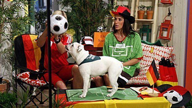fruehstuecksfernsehen-studiohund-lotte-in-action-im-studio-028