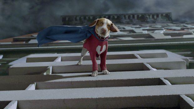 Der süße Shoeshine mutiert zum Superhund ... © Walt Disney Pictures.  All rig...