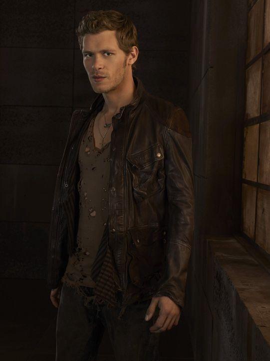 (3. Staffel) - Tief im Inneren sehnt sich Klaus (Joseph Morgan) nach einer Familie, denn er ist einsam ... - Bildquelle: Warner Brothers