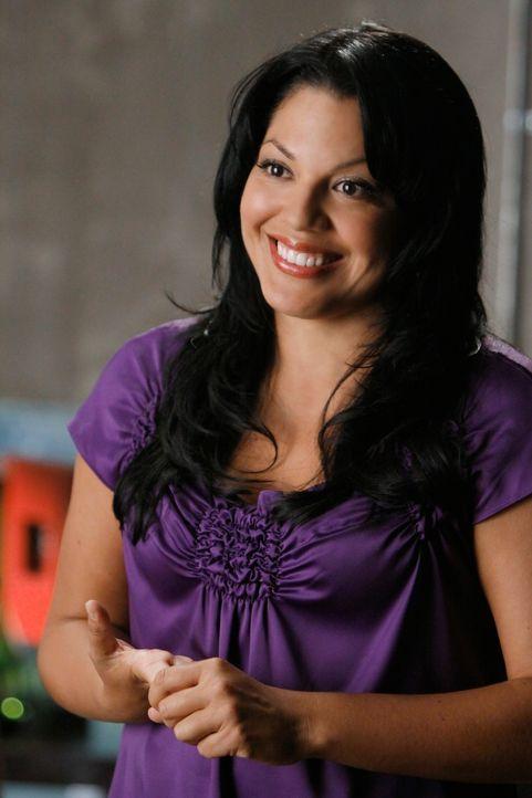 Nach einem Autounfall wird Webber mit einer Fußverletzung ins Mercy West eingeliefert, wo er prompt auf Callie (Sara Ramirez) trifft, der es sichtli... - Bildquelle: Touchstone Television